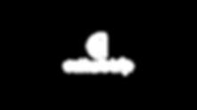 CT Logo Main White.png