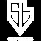 logo_ST_WIT.png