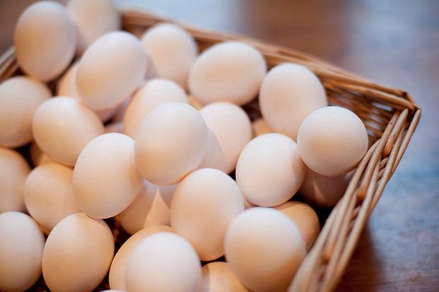 hen_eggs.jpg