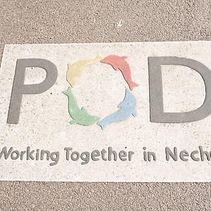 Nechells POD Mayor's Event