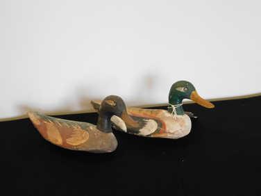 Pair of English decoy ducks