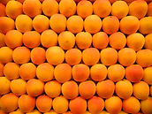 many apricots in rangs