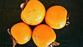 Four persimmons with water pearl