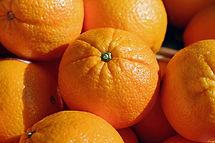 Whole oranges illuminated by sun