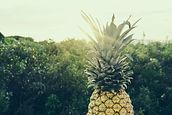 Un ananas avec en fond un paysage tropical