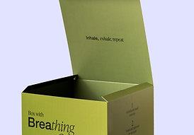 Over adem en ademsteun