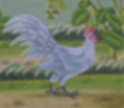 Coq De Bruyere.JPG