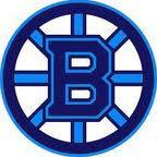 Blaine Youth Hockey