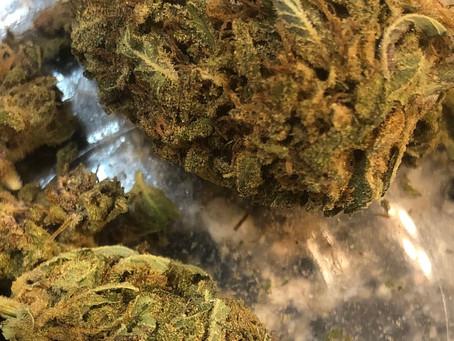 US House Votes to Decriminalize Marijuana