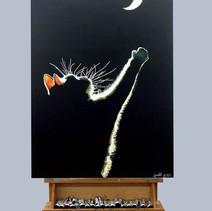 חתלתול לאור ירח
