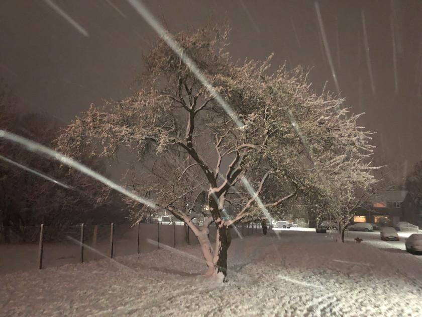 A Snowy Llantwit Fardre