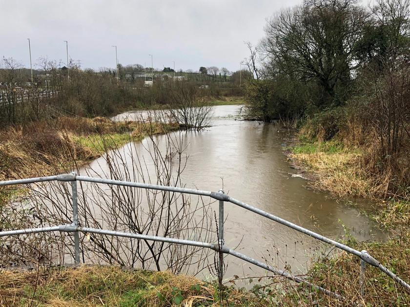 Ystrad Barwig Farm - Storm Dennis Flooding