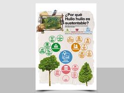Infografia Huilo-Huilo