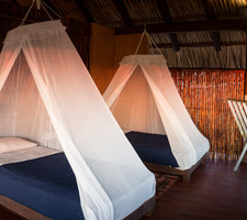 Palapa Room Two Beds