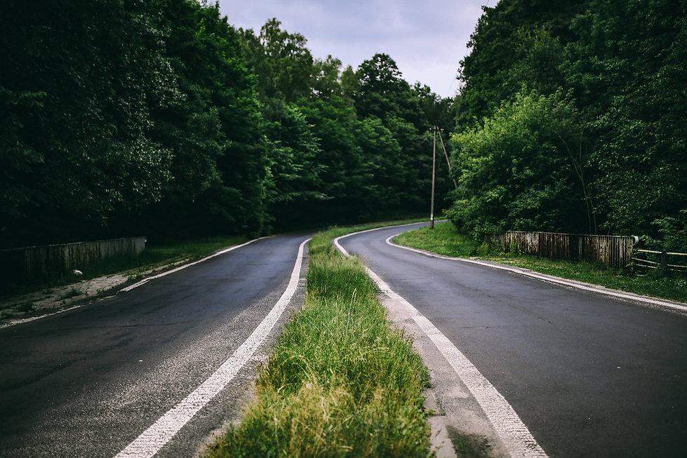 kaboompics_Asphalt road through a forest
