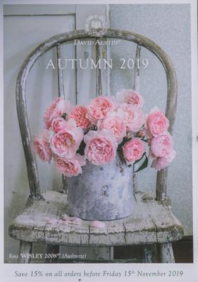 davidaustinroses 2019 Autumn Mailer