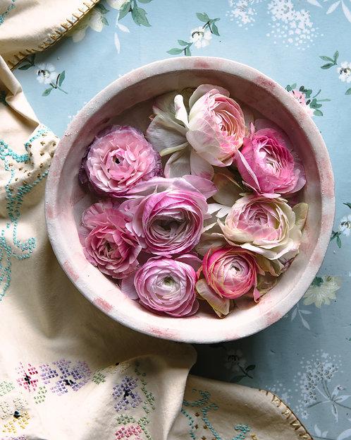 Bowl of Ranunculus