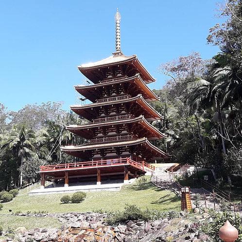 31/01 - Torre de Miroku e Paranapiacaba