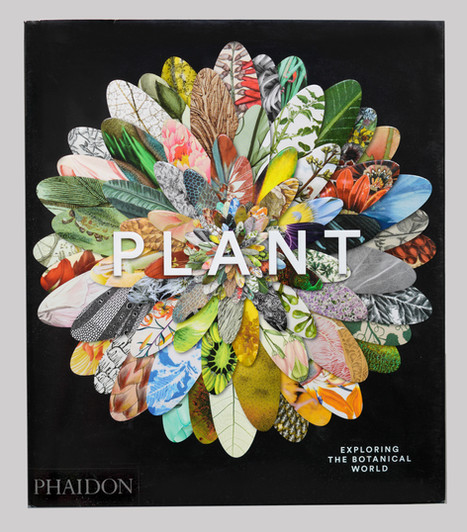 Plant Book Cover.jpg