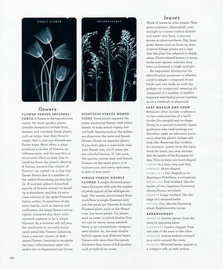 Martha Stewart Tear Sheet 7.jpg