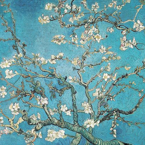Almond Branches in Bloom, Van Gogh