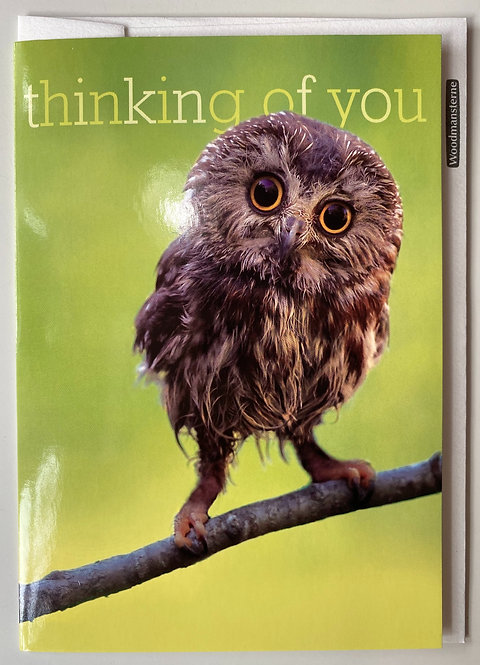 Thinking of you - Twit-twoo