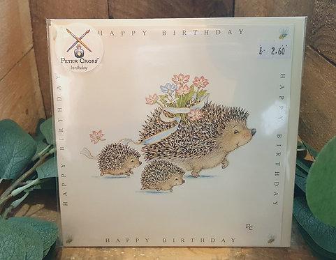 Hedgehogs & Hoglets Happy Birthday
