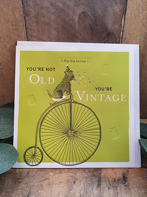You're Not Old You're Vintage