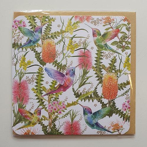 Humming Birds & Flowers
