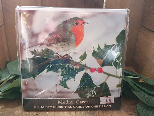 Robin Charity Cards X6