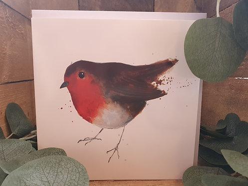 Beautiful Robin