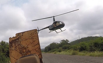 Helicopter darting