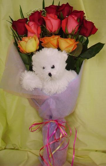 $25 Mixed Dozen with Bear Bouquet