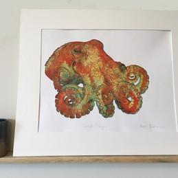 Curled Octopus