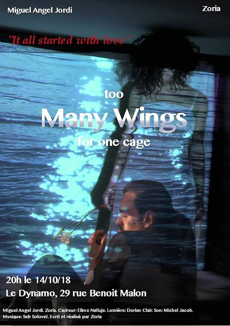 Affiche Too Many Wings for one cage.jpg