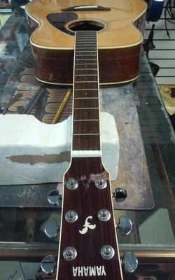 Yamaha acoustic bone nut