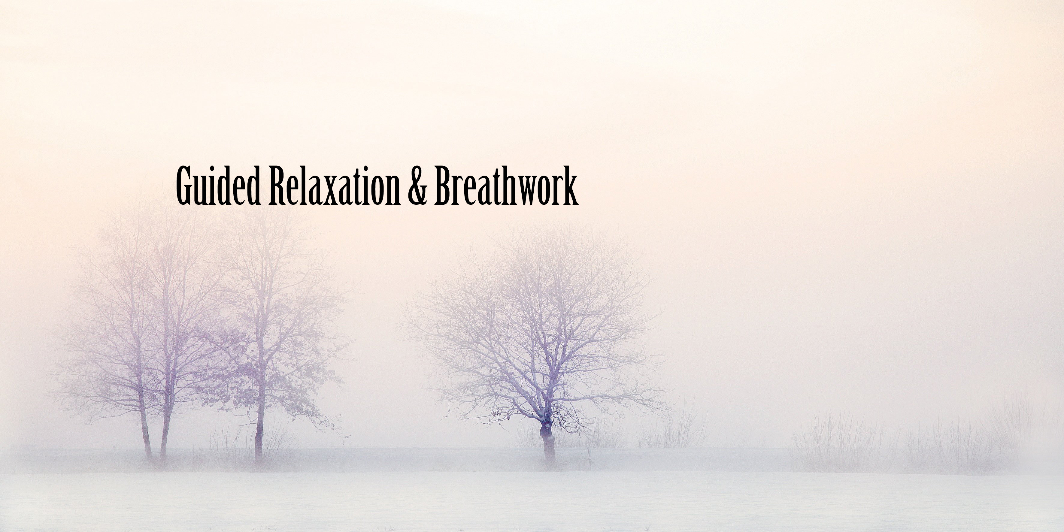 Guided Breathwork & Relaxation