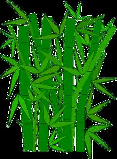 Bambusukat