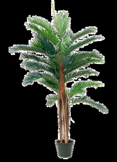 Palmu tekokasvi