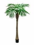 Palmu tekopuu