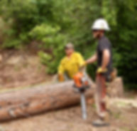 John Bohlinger, owner of Lumber Jack Forest and Tree Care, LLC is an experienced forester in the Black Hills region and capable of meeting your tree care needs