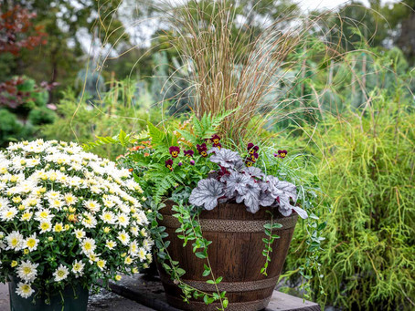 Container Gardens That Span The Seasons