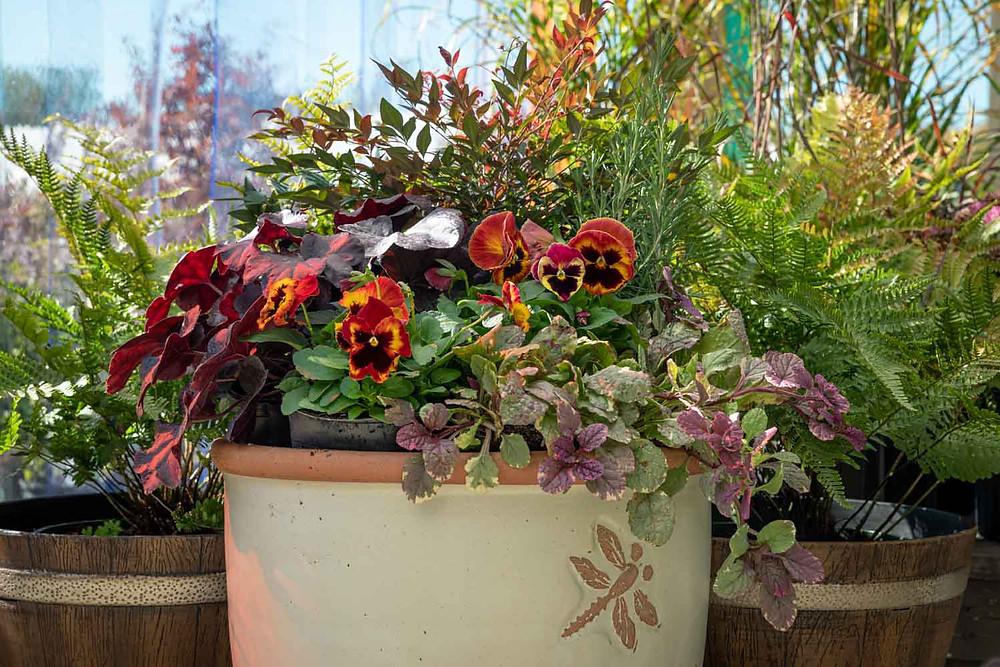 Earthmix garden mix