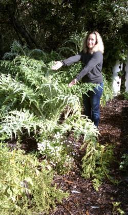 EarthMix Garden Soils