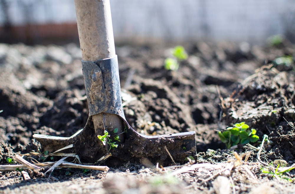 Soil testing EarthMix garden soil