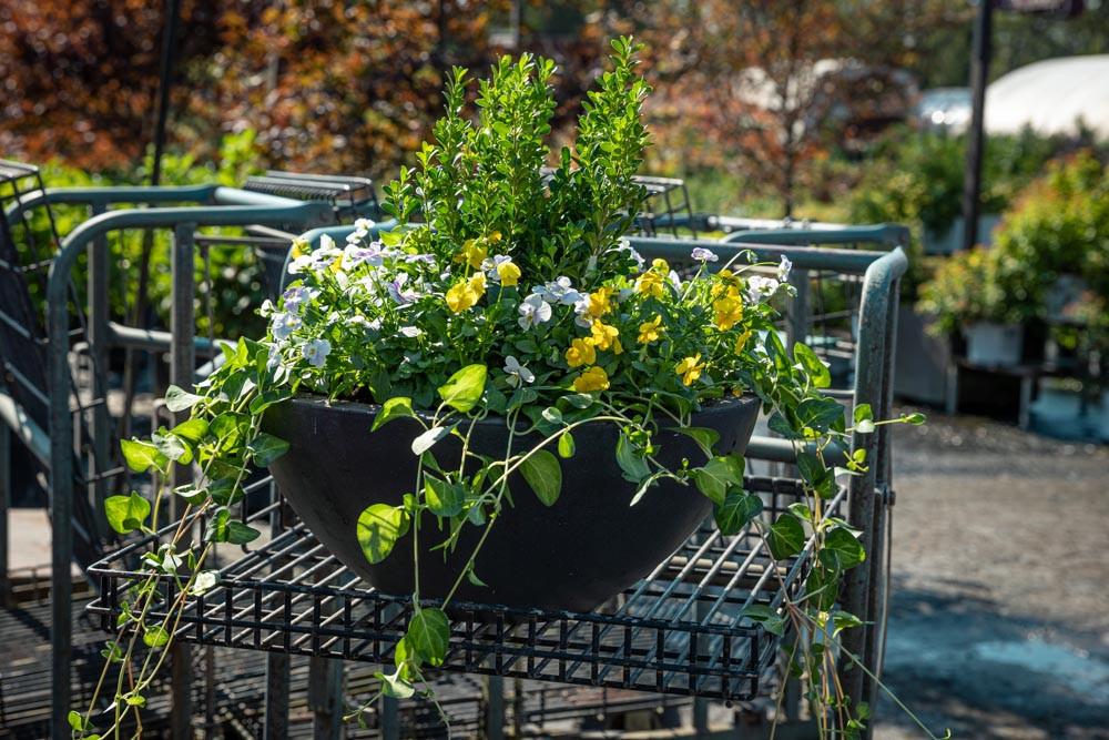 EarthMix garden products