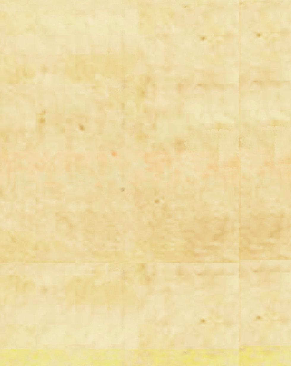 Blank Cover.jpg