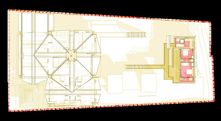 Organisation - Plan R+2.png