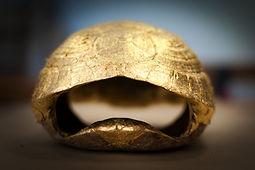 tortue feuille d'or.jpg