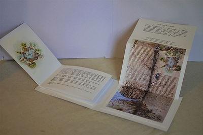 livre ouvert int paint.jpg